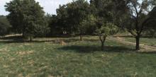 Prodej stavebního pozemku - Proruby okr. Náchod