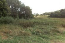 Prodej stavebního pozemku - Dolní Radechová