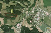 Prodej dvou lesních pozemků, tvořících jeden celek v obci Pecka, okr. Jičín