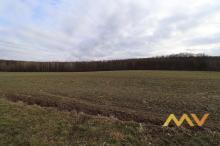 Prodej pozemku 5493 m2, Kratonohy - Michnovka.