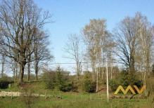 Prodej stavebního pozemku 2053 m2, obec Vernéřovice.